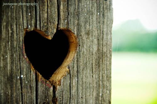 Heartcr_2