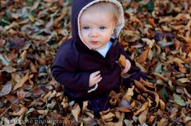 Cole_leaves_favecr_2