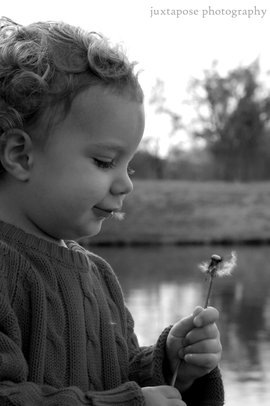 Dandelion_child_1bwcr