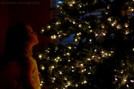 Princess_lights_1cr